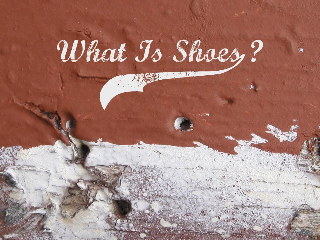 text: What is shoes?