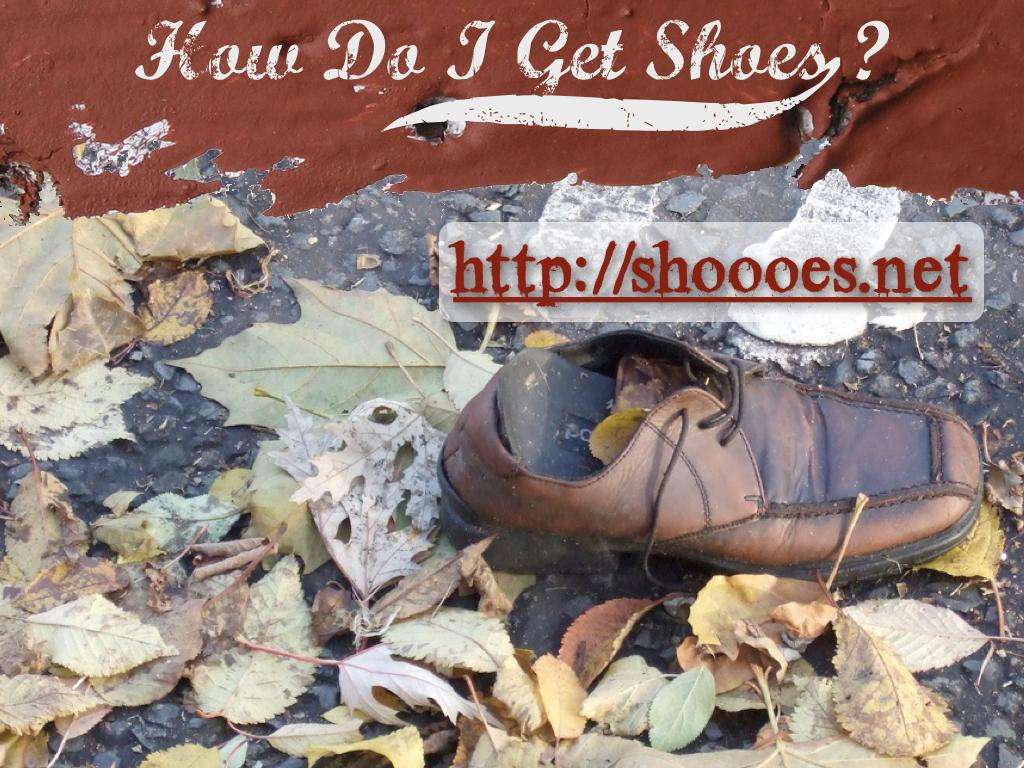 A photograph of a brown shoe among some leaves. text: How do I get shoes? http://shoooes.net